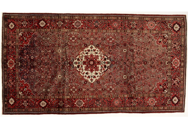 Oriental Collection Hamadan Teppich 165 x 305 cm