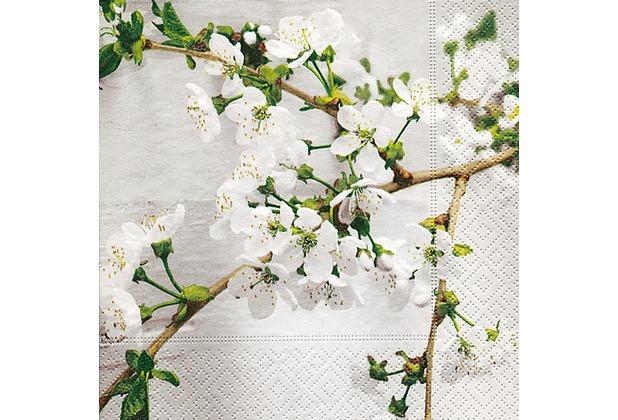 Paper+Design Tissue Servietten Cherry Twig 33 x 33 cm 20 Stück