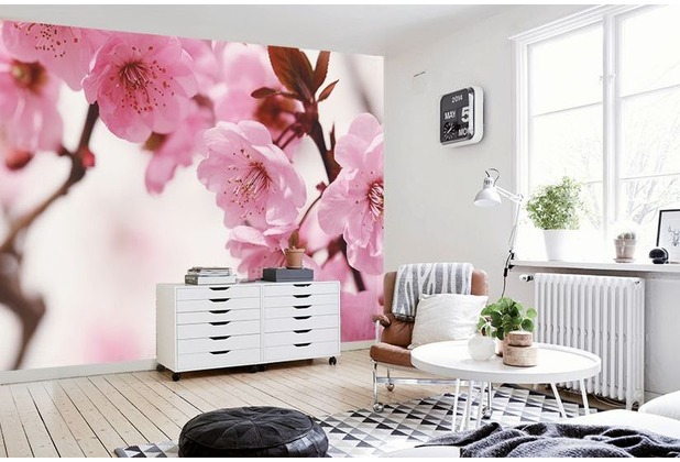 """papermoon Cherry blossom Fototapete 7 Bahnen \""""Silver Editions\"""", 350 x 260 cm, Kirschblüte 031"""
