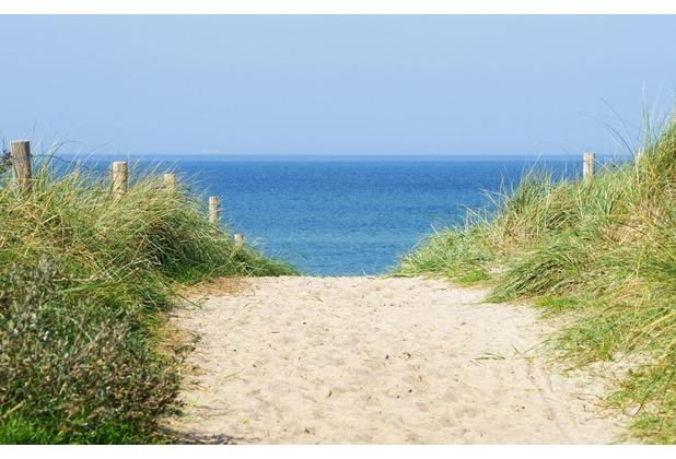 papermoon Fototapete Dune at the Ocean 7 Bahnen 350 x 260 cm Vlies