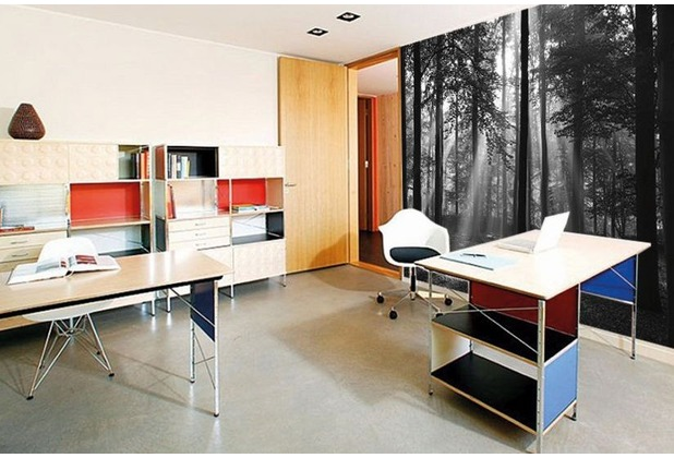 "papermoon Forrest b/w Fototapete 7 Bahnen \""Silver Editions\"", 350 x 260 cm, Wald s/w 006"