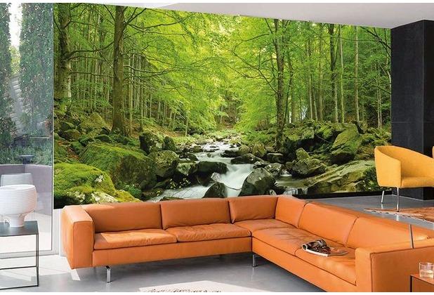 "papermoon Forrestlake Fototapete 7 Bahnen \""Silver Editions\"", 350 x 260 cm, Waldbach 060"