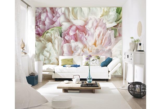 papermoon Fototapete 7 Bahnen, Digitaldruck Blooming Peonies, Tapetenbahn 50cm, BlueBack 350 x 260 cm
