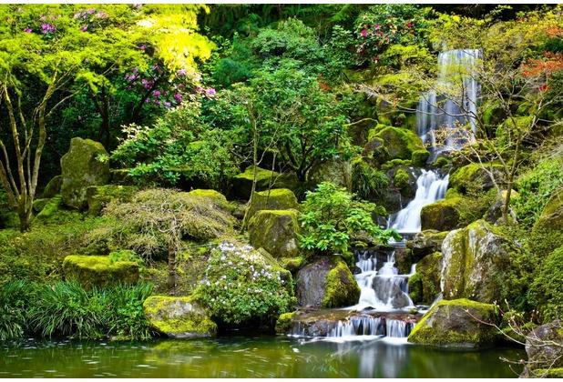 papermoon Fototapete Garden Pond 7 Bahnen 350 x 260 cm Vlies