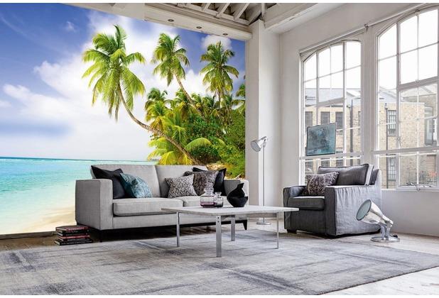 "papermoon Palmtree Fototapete 7 Bahnen \""Silver Editions\"", 350 x 260 cm, Palmenstrand 292"