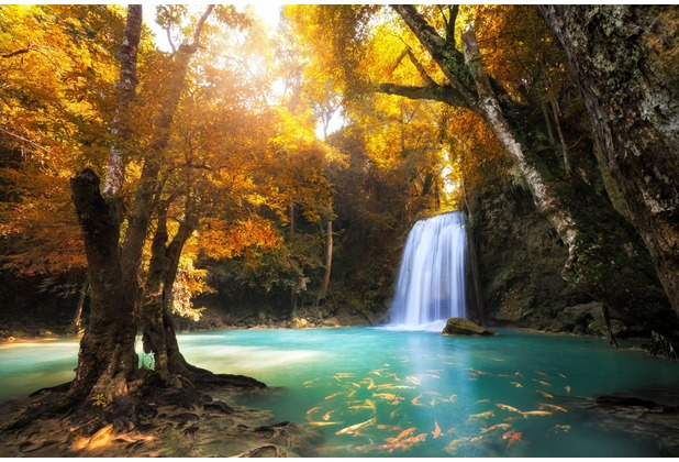 papermoon Fototapete Waterfall in Kanchanaburi, Thailand 7 B 350 x 260 cm Vlies
