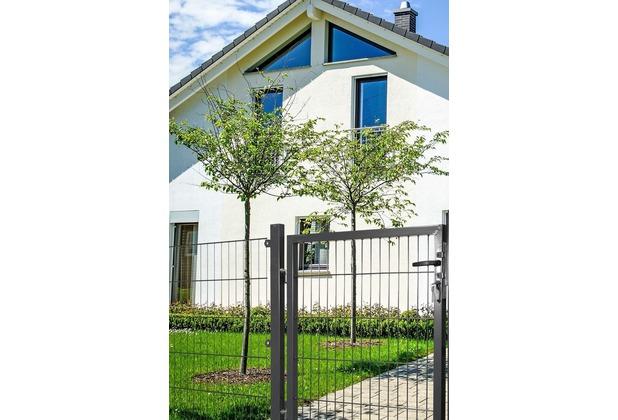 Peddy Shield Gartentor für Stabmatte anthrazit (RAL 7016) einflügelig - 125 cm