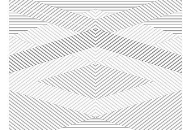 Rasch Digitaldrucktapete Young Artists Wandbild 100440 weiß, grau, schwarz
