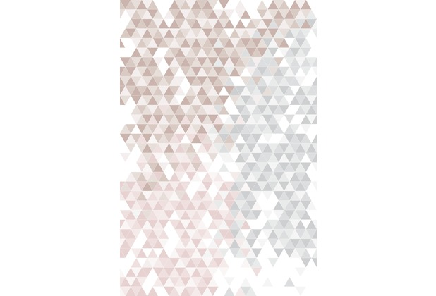 Rasch Digitaldrucktapete Young Artists Wandbild 100822 rosa, braun, grau