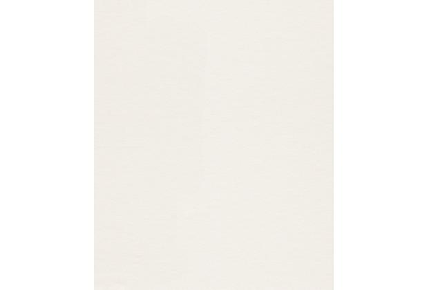 Rasch Vlies (halbfertig) Makulaturvlies / 177602