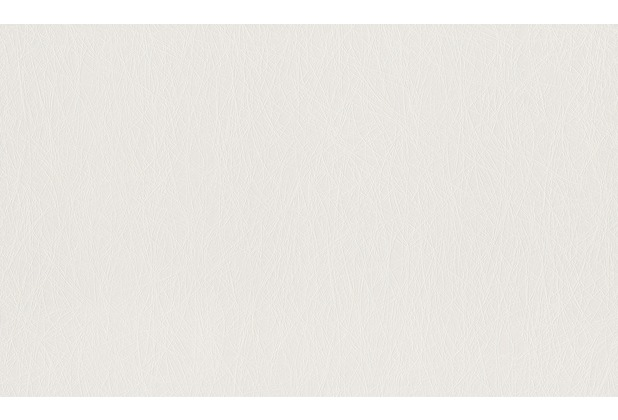 Rasch Vlies (halbfertig) Wallton 2020 124514