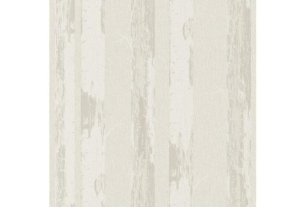 rasch vliestapete birke stamm 574517. Black Bedroom Furniture Sets. Home Design Ideas