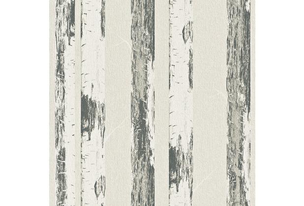 Rasch vliestapete birke stamm 574531 for Birke tapete