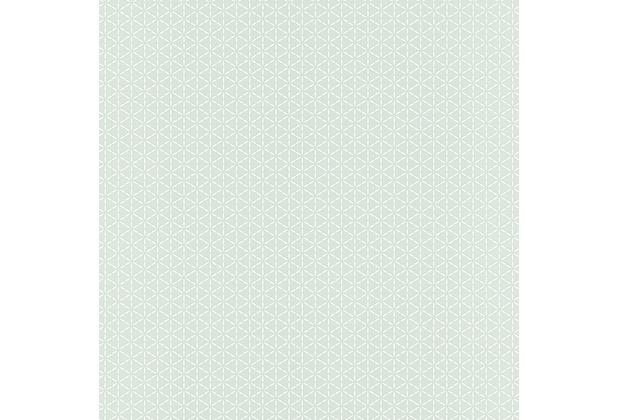 Rasch Vliestapete Muster 518238