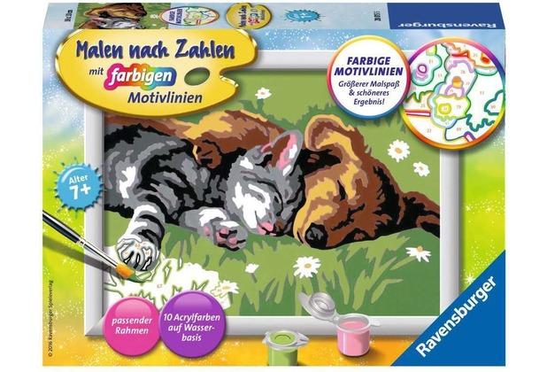 Ravensburger Malen nach Zahlen - Tiefer Schlaf