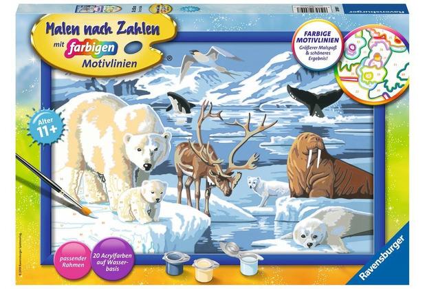 Ravensburger Tiere der Arktis