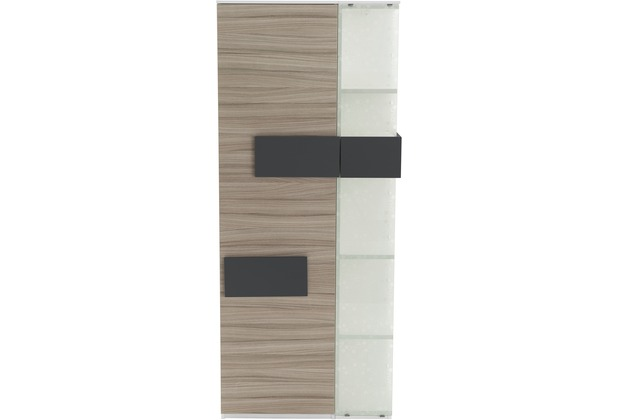 Röhr Vitrine Driftwood 75x180x37 cm Glas rechts Applikation Anthrazit