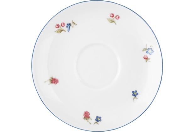 Seltmann Weiden Untere zur Teetasse 13 cm Sonate 34032 bunt, blau
