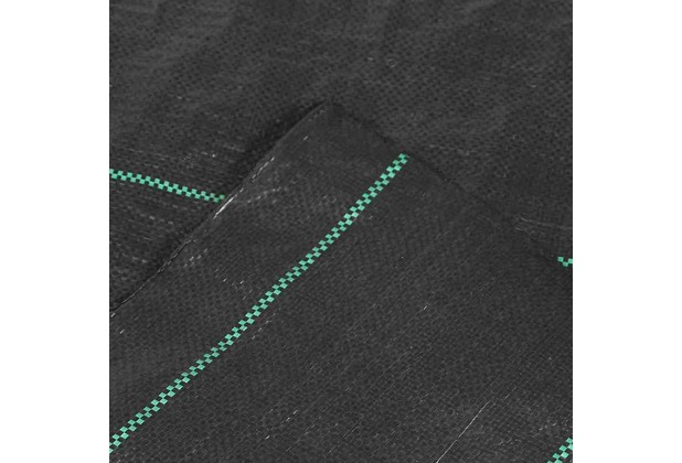 Siena Garden Unterbodengewebe 2x25m 100g, schwarz
