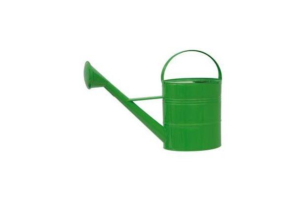 Siena Garden Zinkgießkanne 10l grün