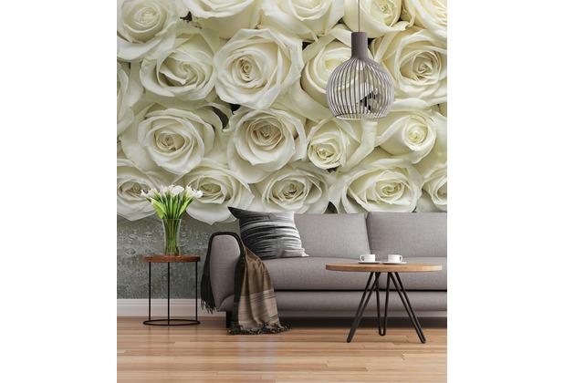 "Sunny Decor Fototapete \""A La Rose\"" 368 x 254 cm"