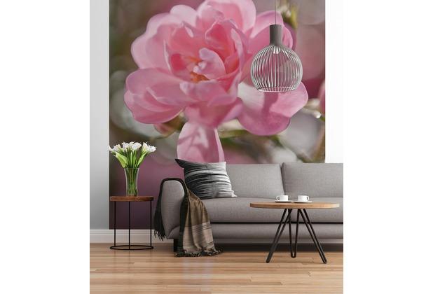 """Sunny Decor Fototapete \""""Bouquet\"""" 184 x 254 cm"""