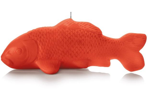 """Wiedemann BIG Edition \""""Koi\"""", getaucht, 1 Stück, Höhe 130 mm, ø 320 mm, Koralle"""