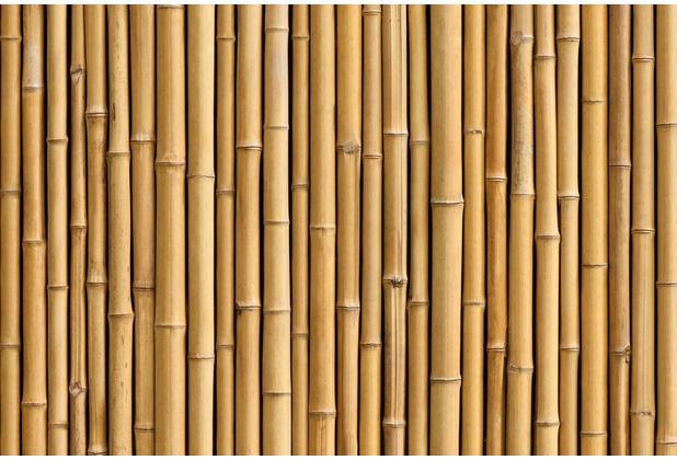XXLwallpaper Fototapete Bambus 150 g Vlies Basic 2,00 m x 1,33 m