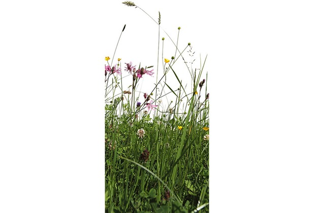 XXLwallpaper Fototapete Grass 150 g Vlies Basic 0,91 m x 2,11 m
