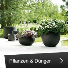 Pflanzen und Dünger