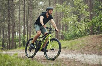 Trekkingräder und Mountainbikes